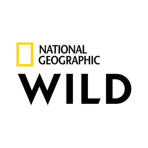 nationalgeo_wild